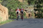 Road cycling bike Tenerife Teide